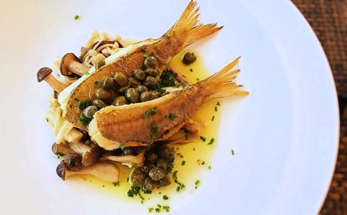 サラマンジェドヨシノランチメニューお魚料理